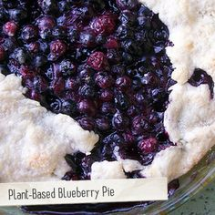 Fresh blueberries make summer the perfect time to make a homemade blueberry pie!