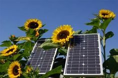 Going solar energy is all the rage these days with huge monetary incentives fueling the fire. Here's a little trick to write off an additional part of your solar energy system purchase. Solar Panel Kits, Solar Panels For Home, Best Solar Panels, Landscape Arquitecture, Solar Projects, Solar House, Solar Energy System, Natural Energy, Diy Solar