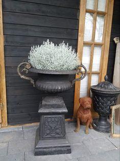 Urn, Garden Sculpture, Planters, Outdoor Decor, Gardens, Home Decor, Decoration Home, Room Decor, Plant