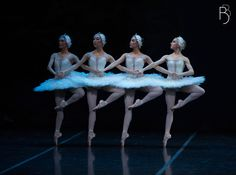 Boston Ballet in Mikko Nissinen's Swan Lake. Photo by Rosalie O'Connor