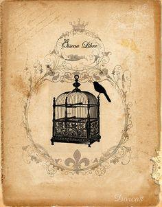 Free vintage images for collage. #art #birdcage #vintage
