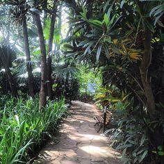 Fundação Ema Klabin | 30 lugares deslumbrantes em São Paulo que vão fazer você se sentir um turista