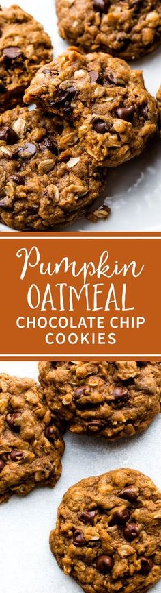 The BEST pumpkin oatmeal chocolate chip cookies! Carefully developed to be soft and chewy pumpkin cookies, NOT cakey! Recipe on sallysbakingaddiction.com