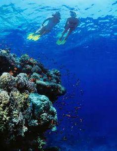 Taba  Egypt   Red Sea