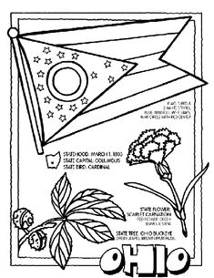 #Ohio State Symbol Coloring Page by Crayola. Print or color online.