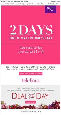 Valentine's Day email 2016