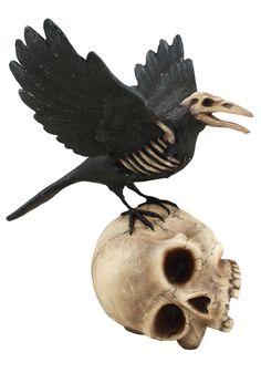 Haunted Raven on Skull
