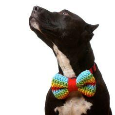 pet bowknots-Pet fashion. Doggie bow tie.