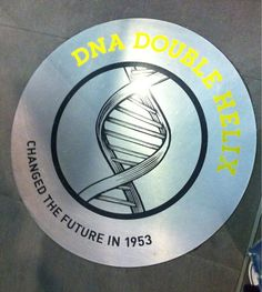 February 28, 1953 - Watson and Crick discover chemical structure of DNA
