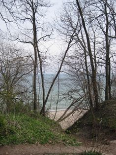 Last week (April 14, 2012), we hiked the seven bridges trail in Grant Park, Milwaukee, WI.