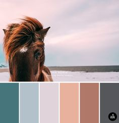 a SEA-horse-inspired color palette // faded teal blue, pale blue, lavender pink, peach, brown, gray