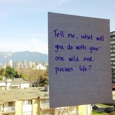 Do as many things, see as many places, and meet as many people as possible in my one wild and precious life.