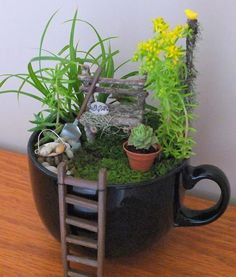 Bring some #green into the house even in the #winter with this cute mini teacup #garden
