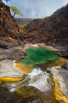 Wadi Ayhft, Dixam Plateau, Socotra Island, Yemen ~ UNESCO World Heritage Site.  Photo: anthony pappone photographer, via Flickr