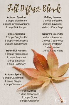 Essential Oils for the Autumnal Equinox and the Fall Season Essential oil diffuser blends that smell like the fall season! These are perfect for aligning yourself with the emotional, physical, and spiritual energy of the autumn. Fall Essential Oils, Essential Oil Diffuser Blends, Young Living Essential Oils, Doterra Diffuser, Autumnal Equinox, Diffuser Recipes, Fall Season, September, Weather