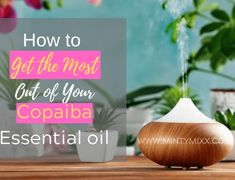 13 Essential Oils to Eliminate Stinky Odors - Plus 3 Odor Blends You'll Love - MintyMixx Young Essential Oils, Copaiba Essential Oil, Clove Essential Oil, Essential Oils Guide, Best Diffuser, Best Essential Oil Diffuser, Massage Oil, Softball Tshirts, Bedroom Fun