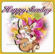 Sunday Gif, Good Morning Happy Sunday, Enjoy Your Sunday, Blessed Sunday, Happy Day, Weekday Quotes, Sunday Quotes, Happy Quotes, Blessed Quotes