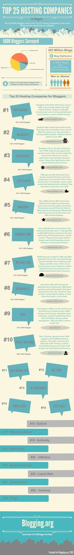 Top 25 Web Hosting Providers [#INFOGRAPHIC] | The Best Infographic Blog