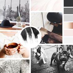 $12 FOR SALE // DIY MOOD BOARD TEMPLATE. Now you can easily design your own mood board for your business! Check out the Branding Boutique for new templates! Mood Board. Branding. Brand board. Blush Pink. Rose Gold. French Bull Dog. Coffee Addict. Artist. Photography. Fashion. Blogger. Moody. Farmhouse Chic.