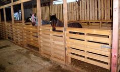 Resultado de imagen de horse shelter made of pallets