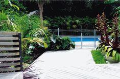 subtropical garden design nz - Google Search