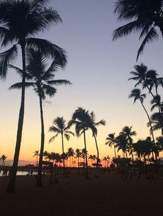 Waikiki Beach by the Hilton Hawaiian Village