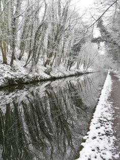 """ Reflections of Snow covered trees on the Shropshire Union Canal at Brewood…"