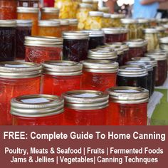 Free: The Complete Guide To Home Canning