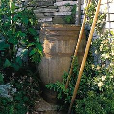 You can save about 1,300 gallons of water during peak summer months with the addition of a properly placed and installed rain barrel. We show you how. | Photo: John Glover/ Garden Picture Library | thisoldhouse.com