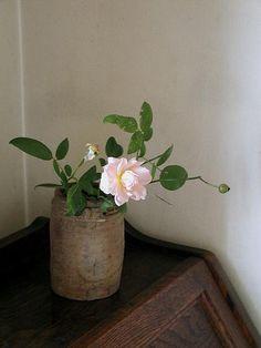 九月の薔薇//ひと回りもふた回りも小振りになって咲いている庭薔薇。 まだ暑い、でも少し斜めになってきた日差し。 人も花もお疲れさま。 九月の声を聞いたら、壊れたように眠りつづけてしまった。