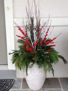 Christmas arrangement, holiday, container garden, white, red, evergreen