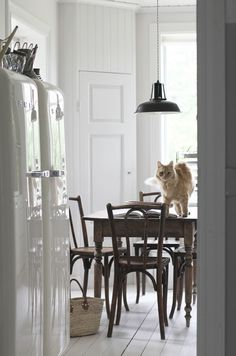 A Stylist's Island Nest in the Stockholm Archipelago – Design*Sponge Scandinavian Living, Scandinavian Interior, Kitchen Interior, Kitchen Decor, Interior Decorating, Interior Design, Interior Stylist, Bentwood Chairs, Space Interiors