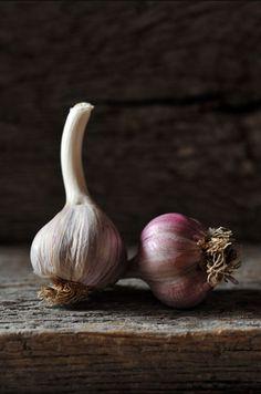 food photography garlic
