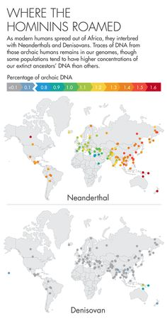 How Neanderthal DNA Helps Humanity | Quanta Magazine