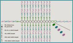 Triko-Návod -Vaflový Vzor 1 Periodic Table, Diagram, Chart, Map, Crochet Bags, Crochet Purses, Periodic Table Chart, Crochet Clutch Bags, Maps