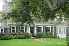 clipped hedges, window boxes