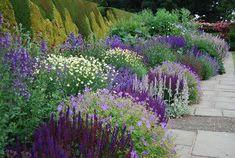 Preparing Your Garden Soil For The Healthiest Plants Back Gardens, Outdoor Gardens, Starting A Vegetable Garden, Vegetable Gardening, Landscape Curbing, Sloped Garden, Purple Garden, Garden Borders, Garden Soil