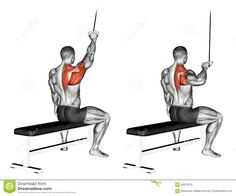 Exercising. One Handed Lat Pulldown - Download From Over 55 Million High Quality Stock Photos, Images, Vectors. Sign up for FREE today. Image: 68612570