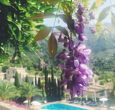 #BelmondPostcards from our corner of paradise in Deià, Mallorca by @misshalbs!