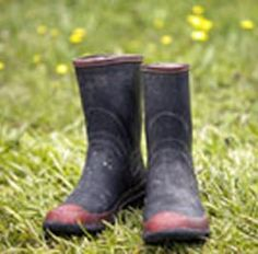 Gumboots - Amanda Martin-Shaver - New Zealand Pages