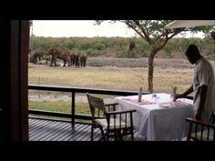 Take a breather and catch up with my video💥 Jamala Madikwe, Royal Safari Lodge https://youtube.com/watch?v=3XiQ6uKOkDY