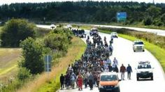 Migrant crisis: Denmark-Germany rail links suspended