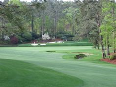 Morning at Augusta