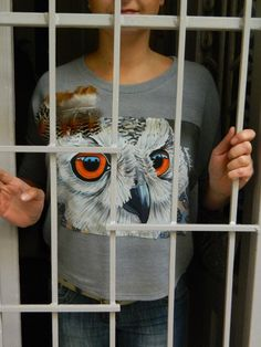 painted silk owl on blouse