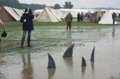 Landsharks at Pennsic - good way to warn people about (really!) deep puddles!