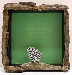 "Honored to have this artwork featured as ""Art of the Day"" on EBSQ.  Art: White Pine Cone by Artist Windi Rosson"