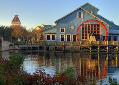 If you go to Disney World..and you should...I recommend the Port Orleans Riverside. It's beautiful, newly redone, secluded, and above all else relaxing.