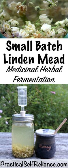 Linden flowers are only up in the trees for about 2 weeks a year, but Fermented Honey, Fermented Foods, Mead Wine, Mead Beer, How To Make Mead, Mead Recipe, Honey Wine, Fermentation Recipes, Homemade Wine