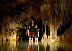 In Rio Secreto Cancun you will get to explore these caves by walking and swimming along the underground paths, experiencing nature´s perfect acoustics and learn about the Mayan culture in an impressive video mapping in the cave, how cool is that? You will also have the opportunity to ride a bike through the jungle to find a hidden cave entrance and rappel down to the underground river. Learn about rock formation as you see impressive stalactites and stalagmites and float in a pitch-black…