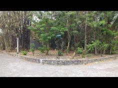 Tanah Dijual Tiyasan Yogyakarta Dekat Bale Hinggil   Tanah Perumahan Jogja   Rumah Dijual Yogyakarta   Tanah Dijual Jogja   Kost dan Gudang Yogyakarta